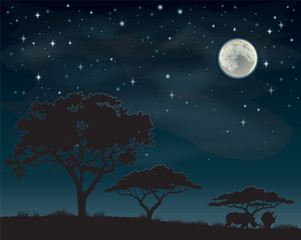 Two rhinos silhouetted against a starry African sky