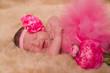nouveau né en tutu rose