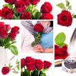 Collage mit Rosenbildern - Liebe