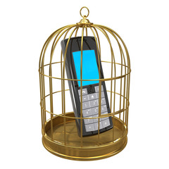 Birdcage with a mobile phone inside