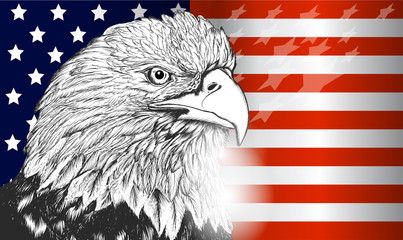 American flag and eagle symbol of USA ,independence and freedom