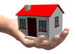 HOUSE IN HUMAN HAND - 3D
