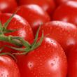 canvas print picture - Nahaufnahme Tomaten