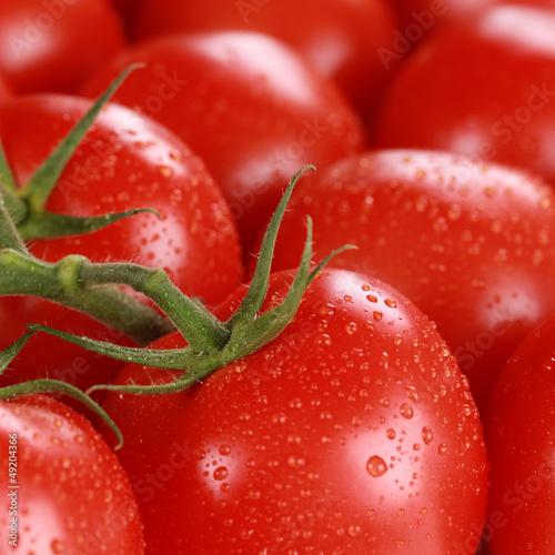 canvas print picture Nahaufnahme Tomaten