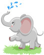 cheerful baby elephant