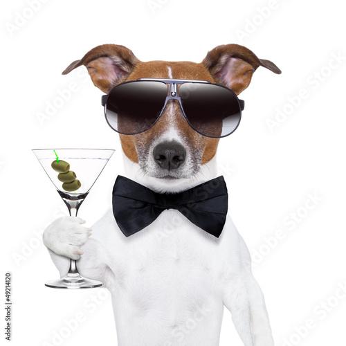 Poster martini dog