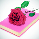 red rose and a pink book