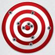 Shooting Range Gun Target with Bullet Holes - 49226723