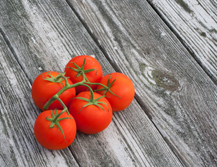 Vine tomatoes on old wood background