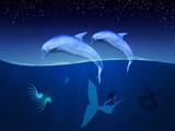 Fototapete Blau - Sprudel - Meeressäuger