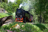 Selketalbahn Harz - 49229521