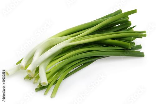 Fresh Onions, Scallions
