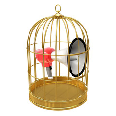 Birdcage with megaphone inside