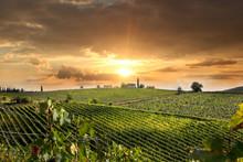 "Постер, картина, фотообои ""Chianti vineyard landscape in Tuscany, Italy"""