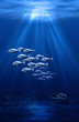 swarm and shark underwater scene
