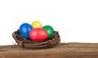 Kleines Osternest  auf Holz Freisteller I