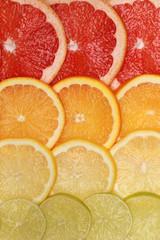 Hintergrund aus Grapefruit, Orangen, Zitronen und Limonen