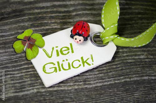 Holzanhänger mit Marienkäfer und viel Glück und Klee