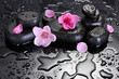 Spa stones with drops and pink sakura flowers