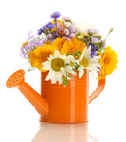 beautiful bouquet of bright  wildflowers in watering can, - Fine Art prints