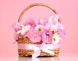 Fototapeta różowy - tło - Inne Przedmioty
