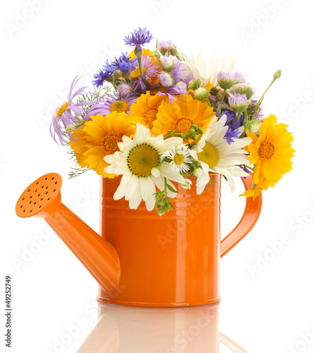 beautiful bouquet of bright  wildflowers in watering can,