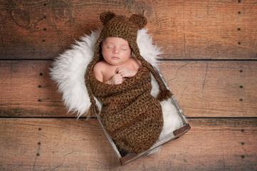 Sleeping Newborn Baby Boy Wearing a Bear Hat