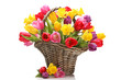 Tulips and daffodils in basket