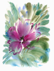 Watercolor pink flower