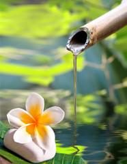 Fontaine en bambou, fleur de frangipanier