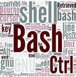 Bash (Unix shell) Concept poster