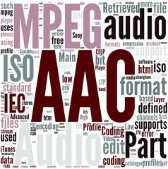 Advanced Audio Coding Concept