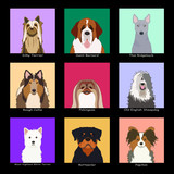The Dog Collection 04