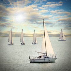 The sailboats on a sea.