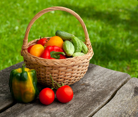 basket of vegetables on wooden garden table