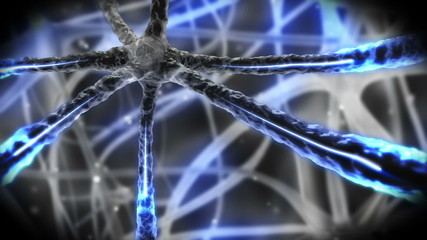 Neuron pulsing through nervous system
