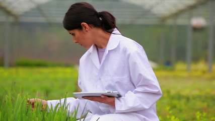 Woman using a tablet pc at the greenhouse