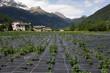 Agriculture in Switzerland.