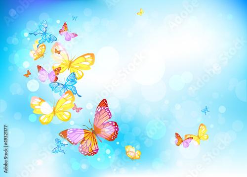 Fotobehang Vlinders Butterflies