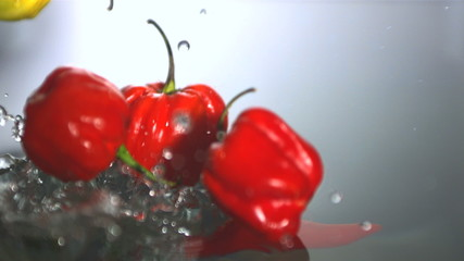 Chili peppers falling in water