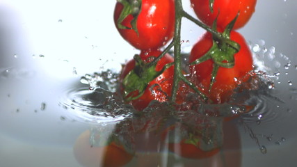 Vine tomatoes falling in water