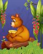 A bear sitting in a wood