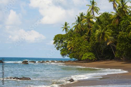 Fototapeten,strand,sand,ozean,bewuchs