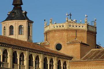 Cigüeñas en Palacio Arzobispal