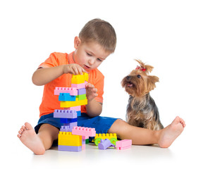 Child playing with building blocks toys. York terrier dog sittin