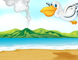 A volcano beach and a flying bird
