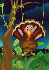 A turkey standing on a branch of a tree