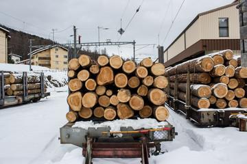 legna, trasportata su rotaie