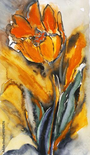 Tulip © Heidrun Gellrich