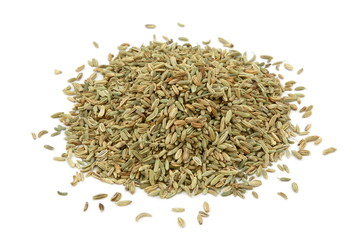 Semi di finocchio - Fennel seeds